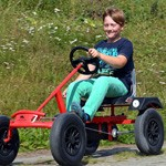 Dino Classics Go Karts